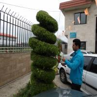 عملکرد نیروهای خدمات شهری شهرداری دابودشت به روایت تصویر