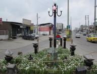 برپایی سفره هفت سین در شهر دابودشت