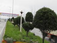 خدمات شهرداری در نوروز 94 به روایت تصویر( 2)