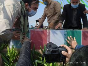 گزارش تصویری از مراسم تشیع  پیکر مطهر شهدای گمنام در دانشگاه آزاد اسلامی واحد آیت الله آملی شهرستان آمل