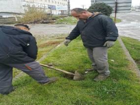 کاشت نهال به مناسبت روزدرختکاری و هفته منابع طبیعی توسط شهرداری دابودشت