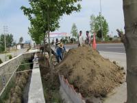 خدمات شهری شهرداری دابودشت به روایت تصویر