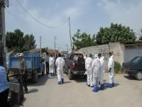 عملیات معدوم سازی مرغ های آلوده به بیماری آنفلوانزای مرغی در شهردابودشت (وسکل) به روایت تصاویر