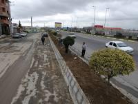 آماده سازی بلوار کندرو روبروی پست بانک شهر دابودشت و کاشت درختچه