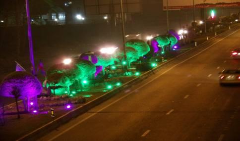 نور پردازی فضای سبز در سطح شهر دابودشت
