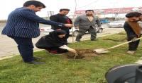 آیین درختکاری در شهر دابودشت با حضور مهدوی شهردارو اعضا شورای اسلامی شهرو کارکنان شهرداری